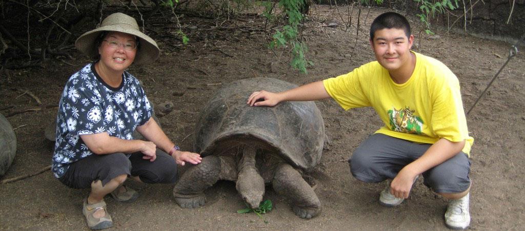Turtle Conservation Volunteering Abroad Program
