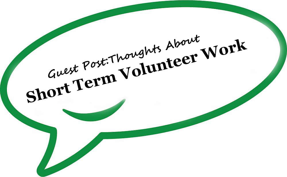 Guest Post Volunteering Experience