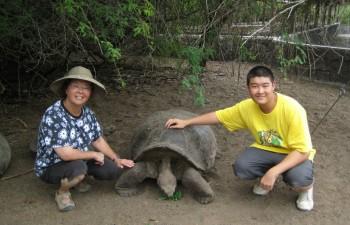 Turtle Conservation Program