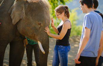 Volunteer Opportunities in Thailand
