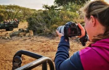 jungle safari in south africa