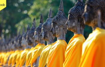 Volunteer work In Thailand